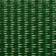 Vert Sapin Pantone 3485